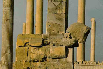 Persepolis_Hundred_Columns